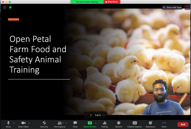 Sharing Slides As A Virtual Background Zoom Help Center