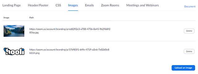 Sample Branding – Zoom Help Center